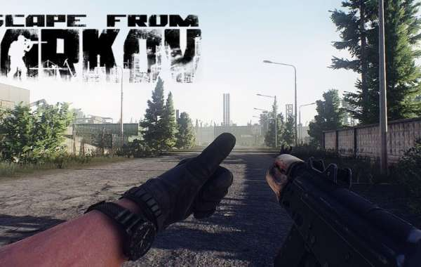 EFT Roubles activities MMO game components from Tarkov posts